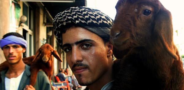 arabski sprzedawaca na targu w egipcie