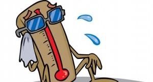 gorace-suche-powietrze-w-domu