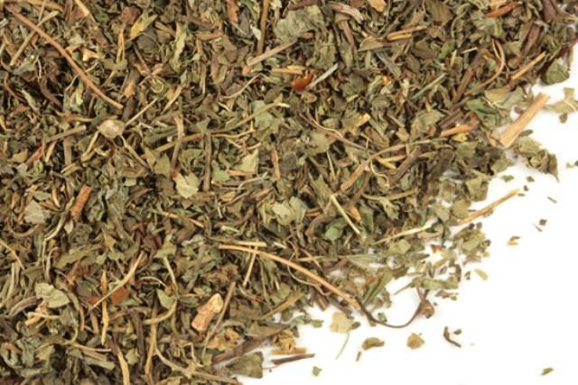 herbata-z-morwy