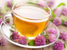 herbata-z-koniczyny