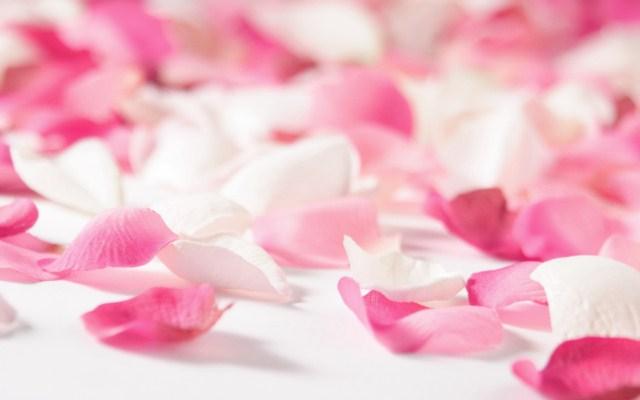 platki-rozy