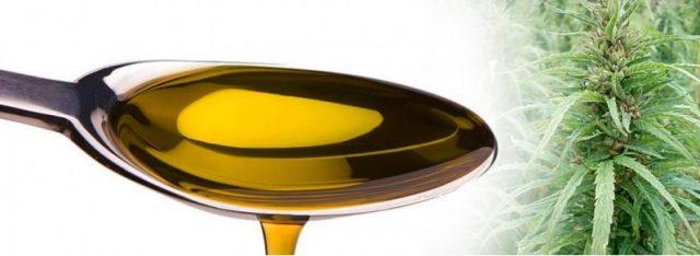 olej-z-konopi-2