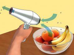 suszarka-na-muszki-owocowki