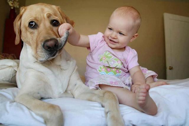 jakie-pierwsze-wzwierzatko-dla-dziecka