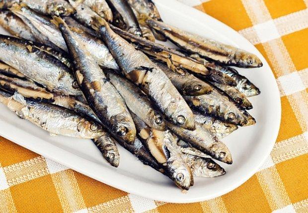 Randki z rybami morskimi
