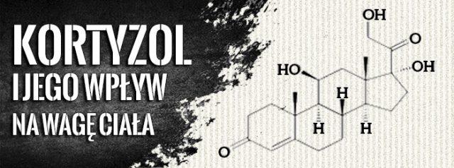 kortyzol-waga-ciala