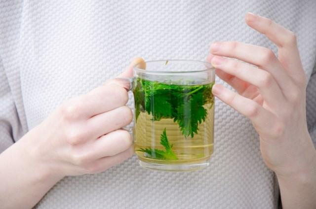 picie-pokrzywy-herbata