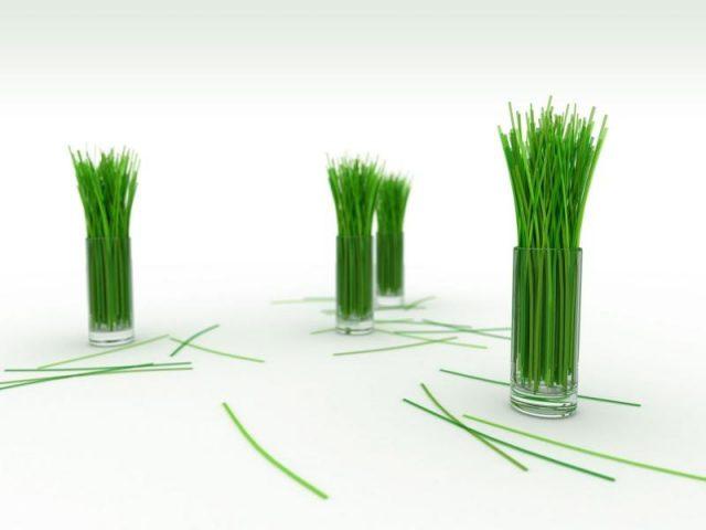 cytrynowa-trawa