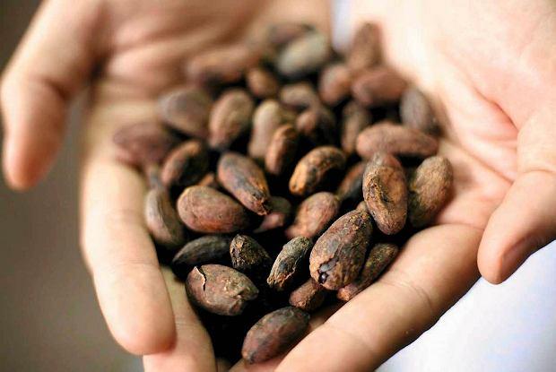 surowe-kakao