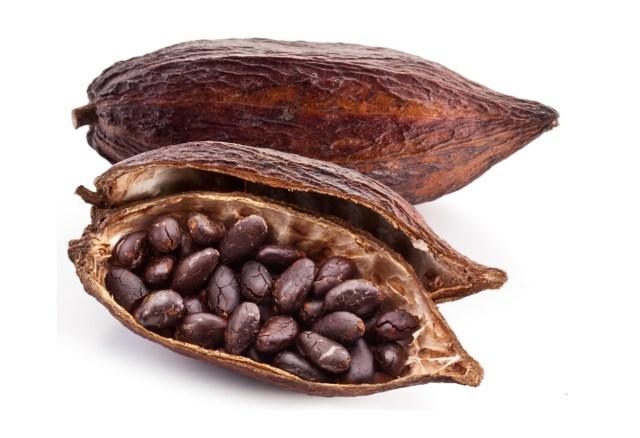 ziarna-kakao