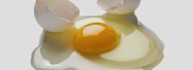 białko-jaja
