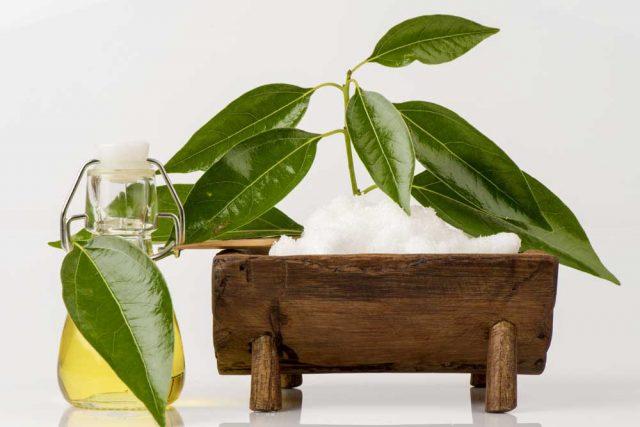 kamforowy-olejek