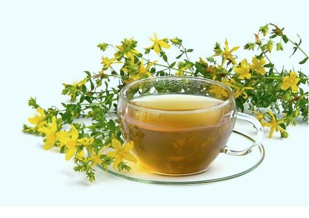 herbata-z-dziurawca