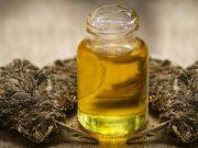 konopie-indyjskie-olej