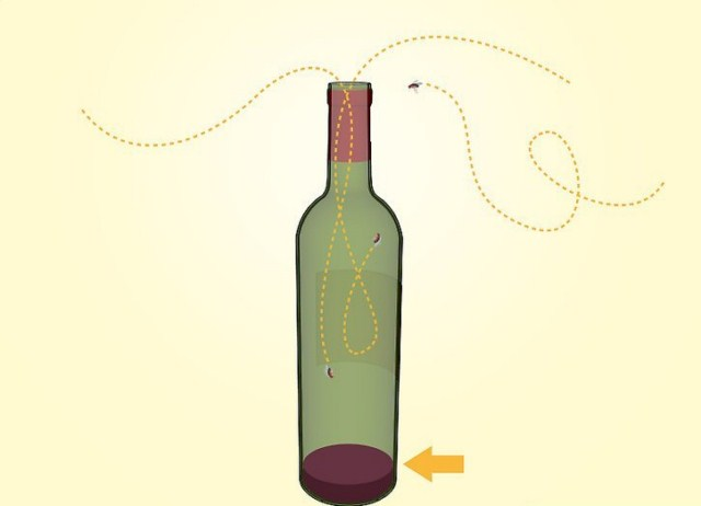 butelka-wina-na-muszki-owocowki