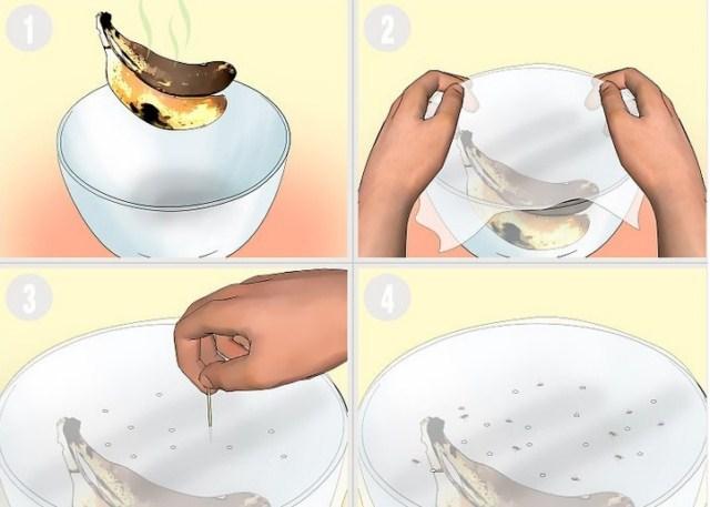 pułapka-na-muszki-owocowki-1