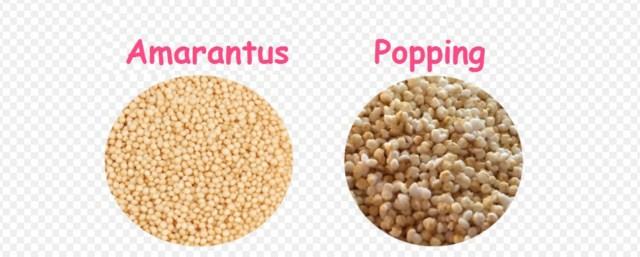 amarantus-popping