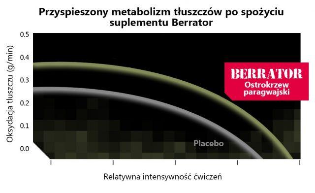 berrator_inesywnosc