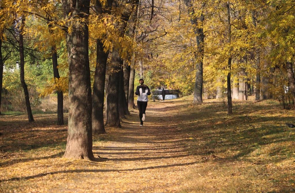 kobieta biega w parku jesienią-2