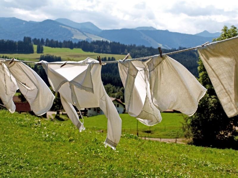 Jak wybrać suszarkę na pranie